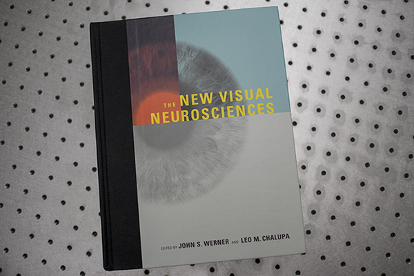 New-Visual-Neurosciences